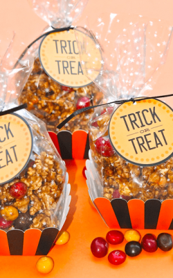 Trick or Treat Halloween Treat Bags