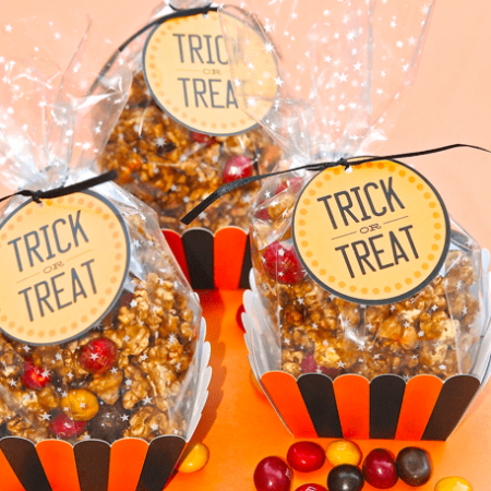 Trick or Treat Halloween Treat Bags