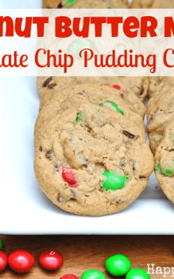 Peanut Butter M&M Chocolate Chip Pudding Cookies