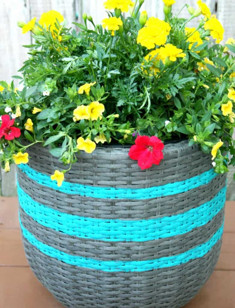 Striped Planter