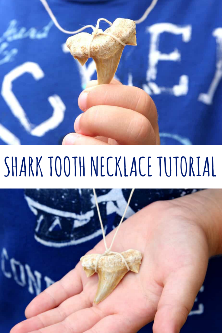 Shark Tooth Necklace Tutorial