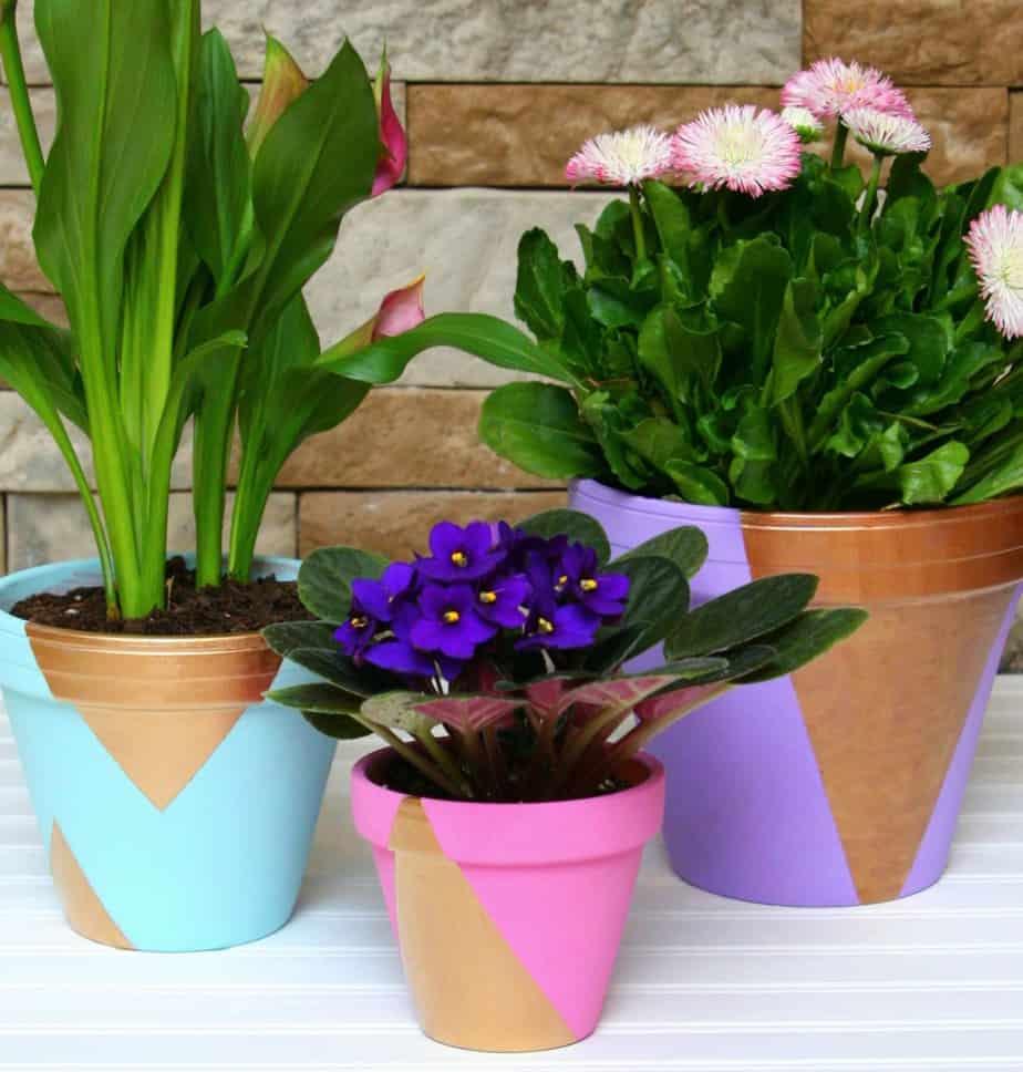 pastel gold flower pots