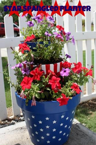 star-spangled-planter