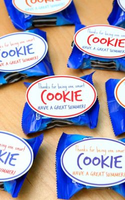 one smart cookie teacher class gift