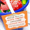 summer bucket of fun 2
