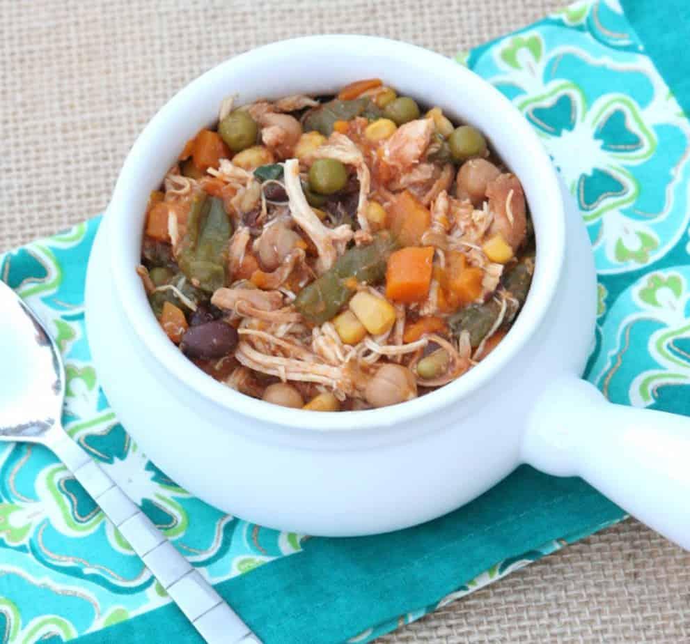 chicken_stew_slow_cooker1-1024x955