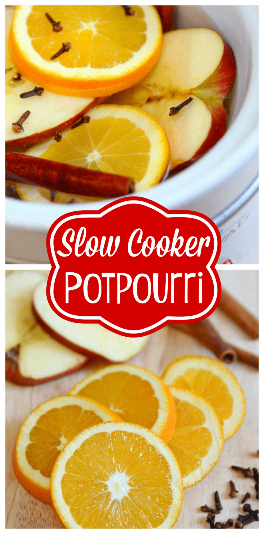 Simmering Holiday Slow Cooker Potpourri