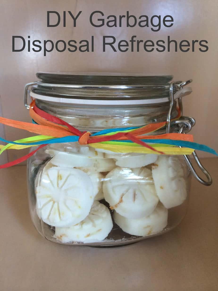 Garbage-Disposal-Refreshers