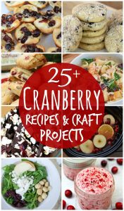 http://www.happygoluckyblog.com/wp-content/uploads/2016/11/Cranberry-Recipes-and-Craft-Projects-176x300.jpg