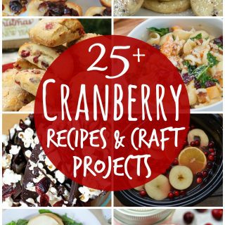 25+ Cranberry Recipes and Craft Projects