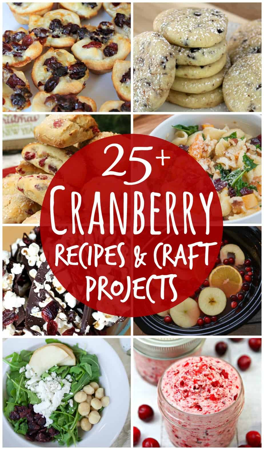 Cranberry Recipes and Craft Projects