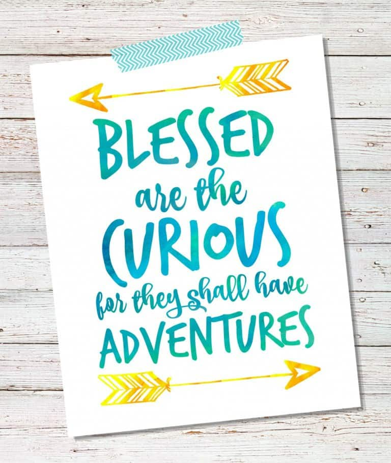 Blessed-are-the-Curious-for-they-shall-have-adventures-768x910