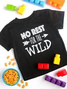 http://www.happygoluckyblog.com/wp-content/uploads/2017/03/Wild-Shirt-2-225x300.jpg