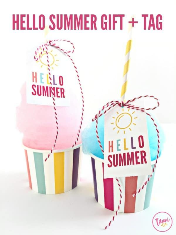 Hello-Summer-3.1