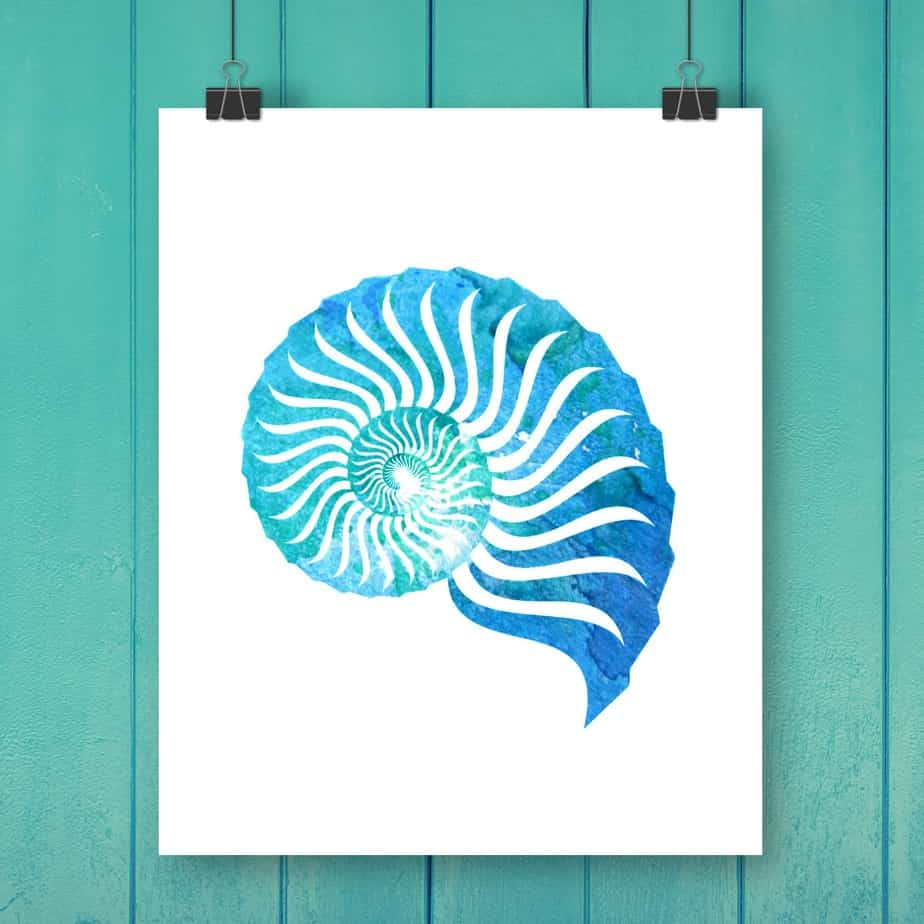 Shell Watercolor Free Printable