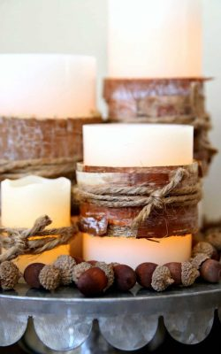Rustic Fall Centerpiece with Bark Wrapped Candles