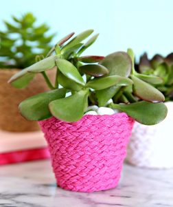 https://www.happygoluckyblog.com/wp-content/uploads/2018/03/Braided-Twine-Wrapped-Flower-Pots-1-252x300.jpg