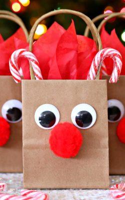 Reindeer Gift Bags - A festive holiday DIY gift bag.
