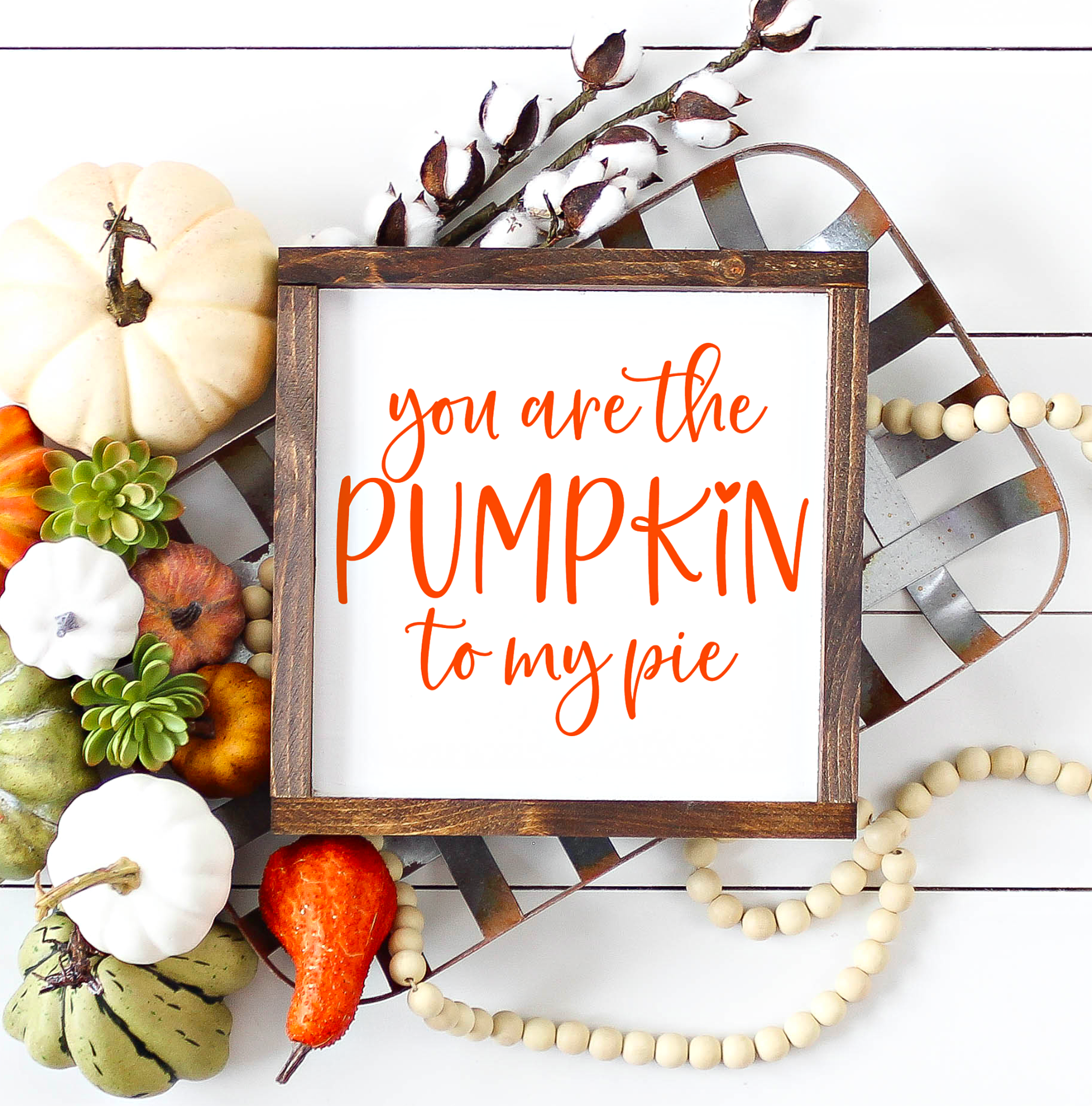 You are the Pumpkin to My Pie SVG Cut File